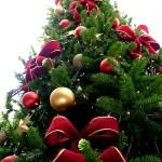 Christmas_tree_